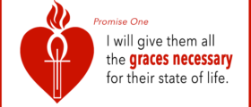 Promises of the Sacred Heart: Promise 1